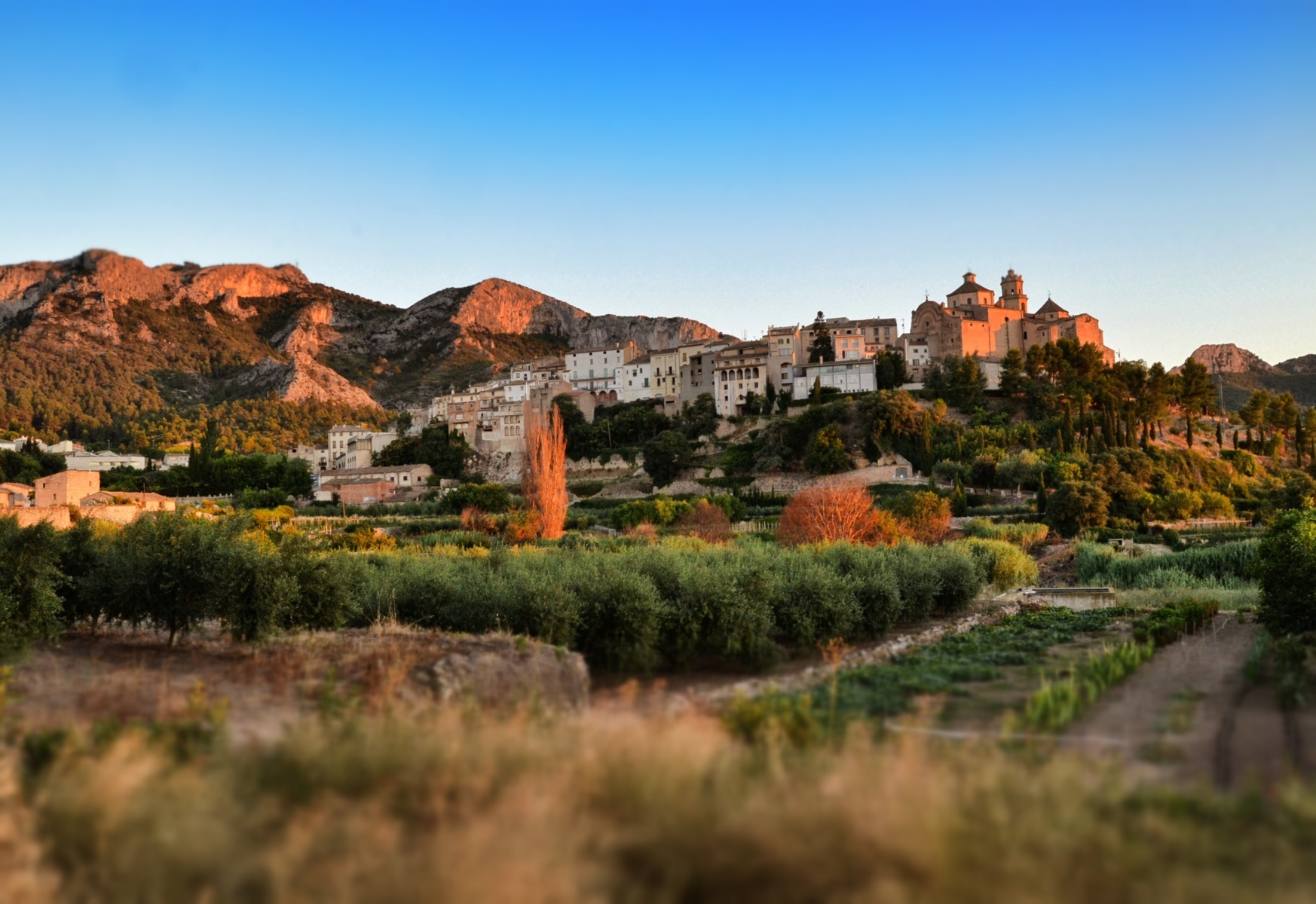 tivissa turisme terres ebre ribera catalunya 2