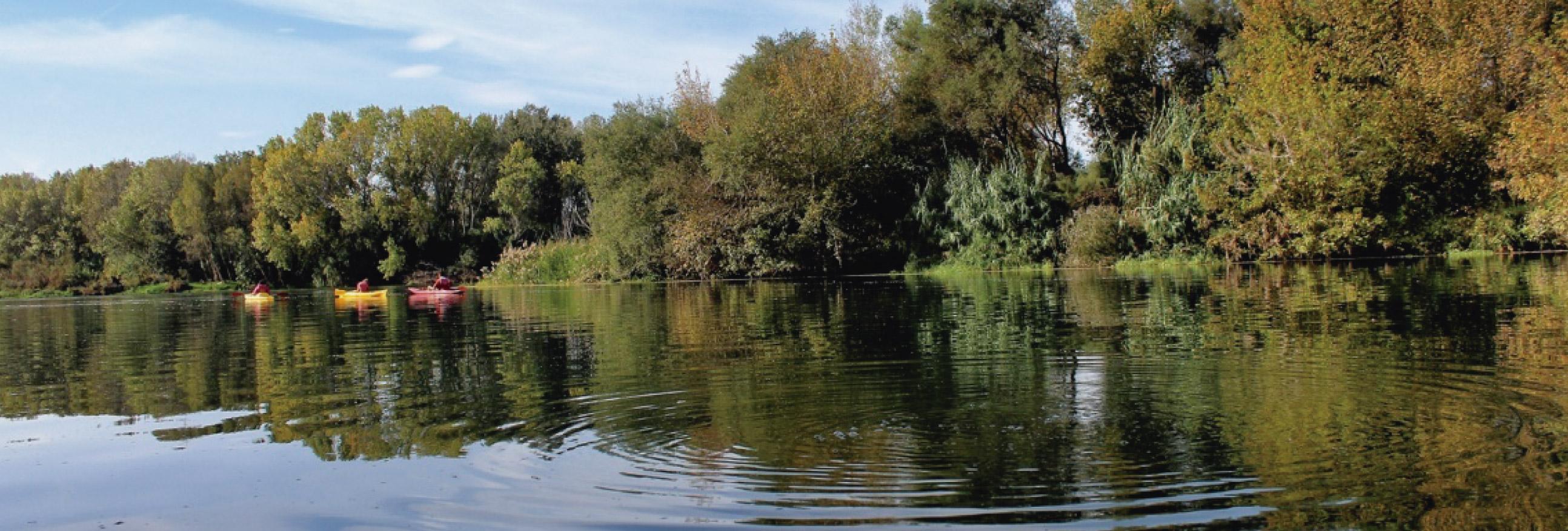 navegar amb piragua o caiac riu ebre 2-01